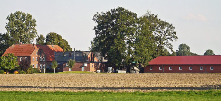 Betriebsfeld