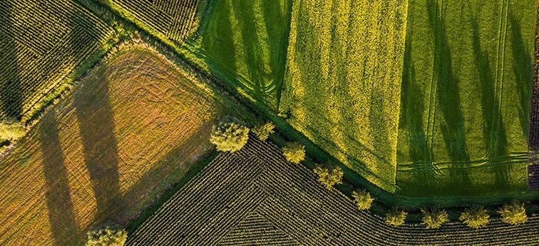 top farmplan Verwaltung