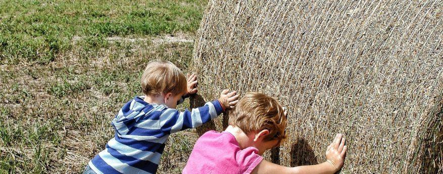 teamwork landwirtschaft